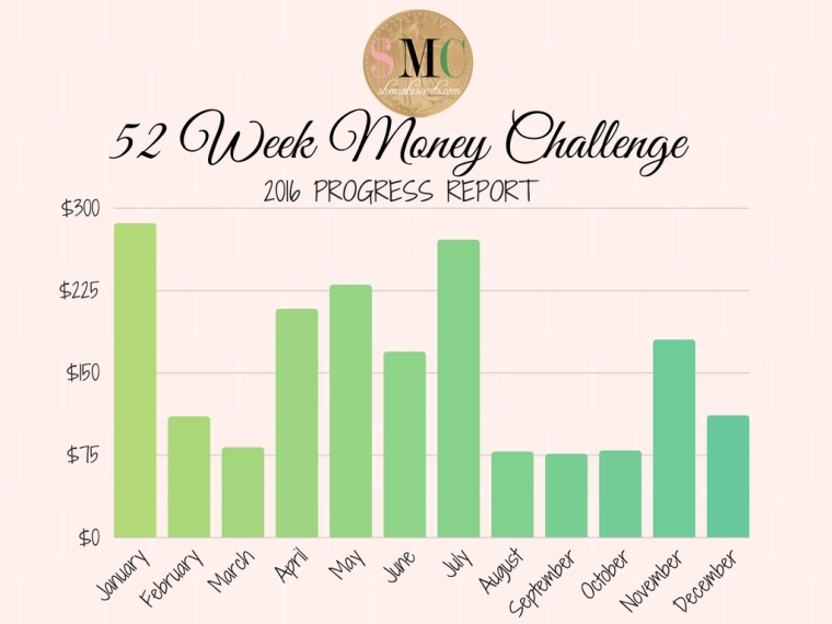 2016-money-challenge-yearly-report
